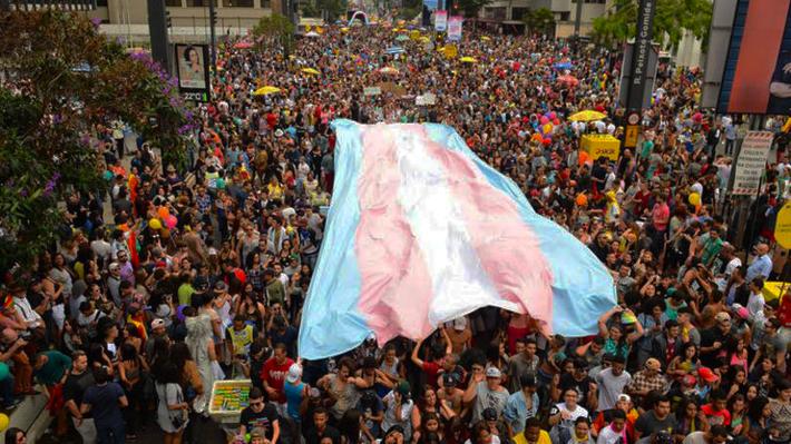 bandeira-trans-pheeno-capa